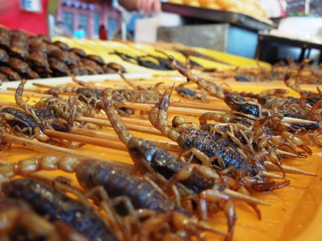 How to eat food in China - Don't order scorpions in Wangfujing