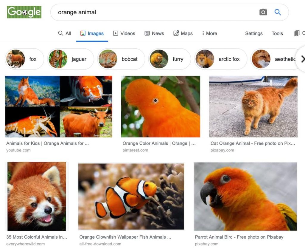 How to learn difficult words by looking up google images for the word and memorising the association