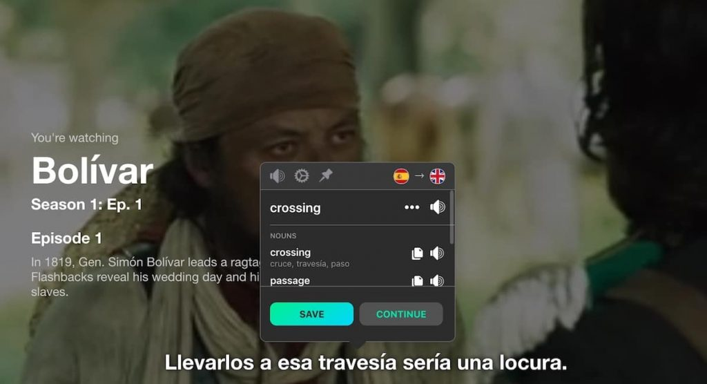 Translate Netflix subtitles live to more easily learn any foreign language.