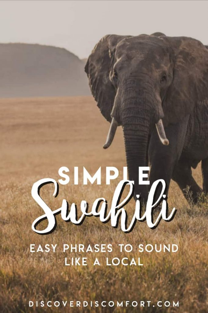 This is the Swahili that's not focused on in textbooks but which makes living in Tanzania or Kenya SO much easier. We learned this after two months in East Africa, learning Swahili, and are happy to pass this on to you.