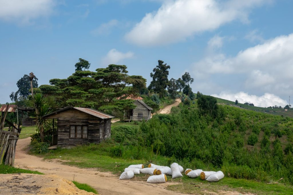 "The Usambara Mountains, where Swahili verbs are used to say things like ""Inapendeza"""