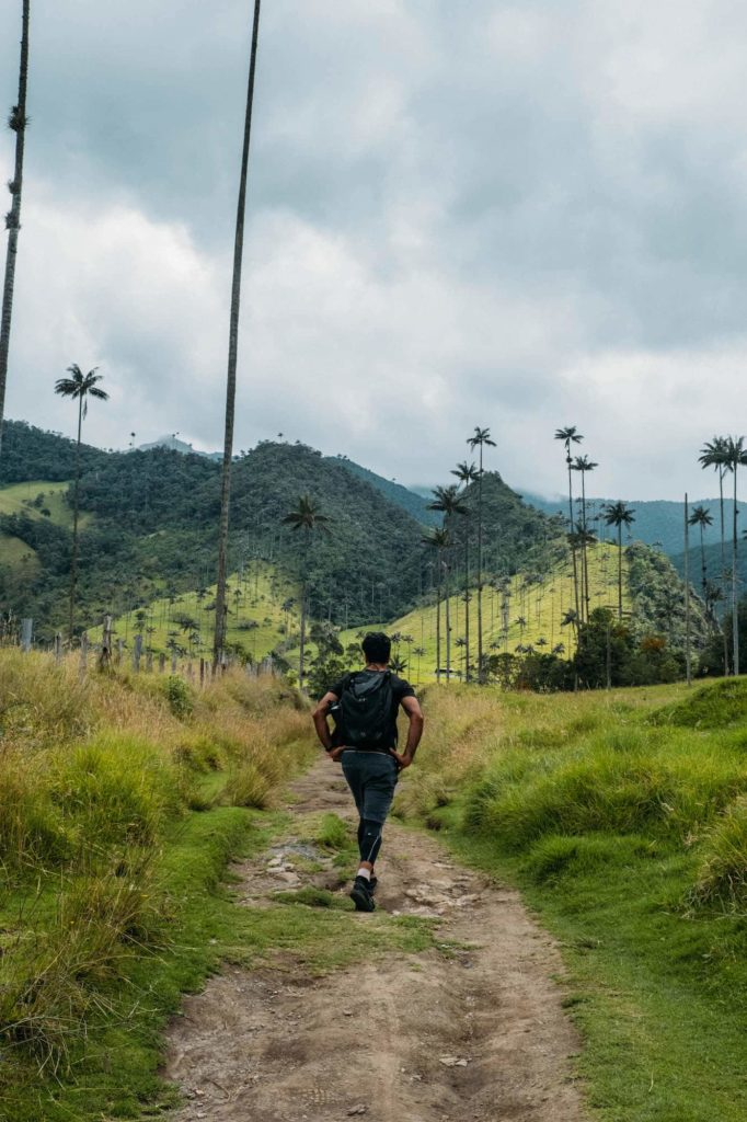 The Ultimate Valle de Cocora Hiking Guide 1