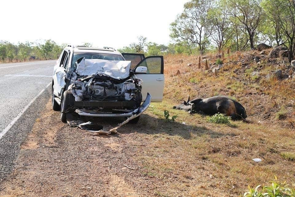 Remains of a car after hitting a water buffalo - showing a bull bar is a necessary 4x4 mods
