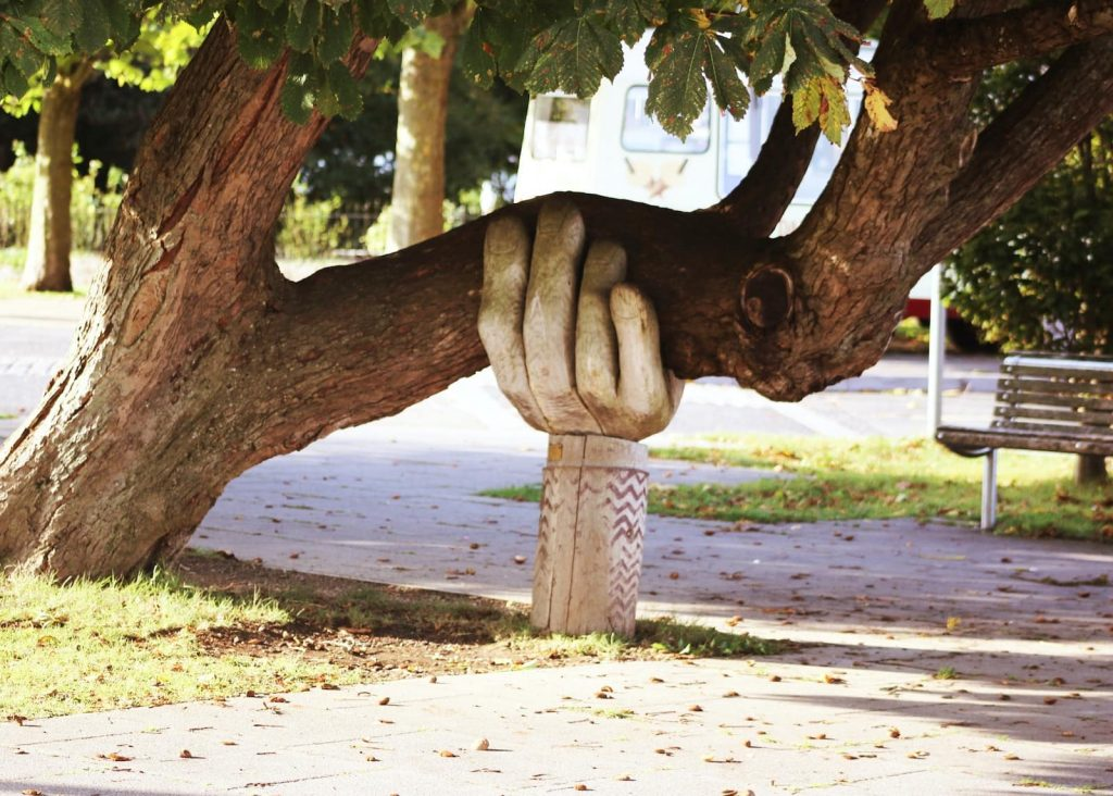 "A hand supporting a tree, for the article ""you're welcome"" in French."