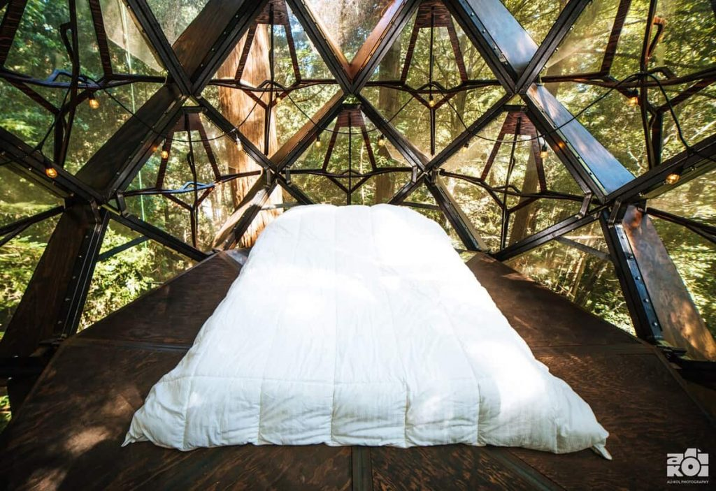 best northern california airbnb pinecone treehouse 2