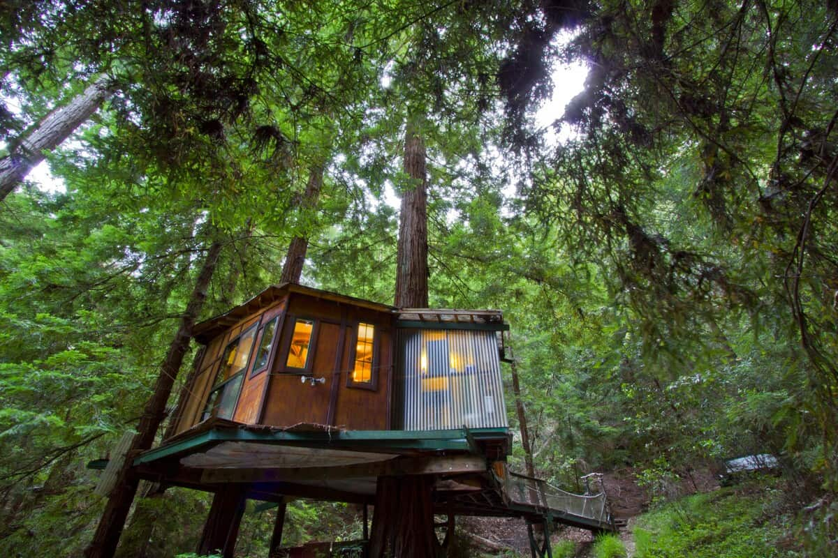Redwood Treehouse California Rental