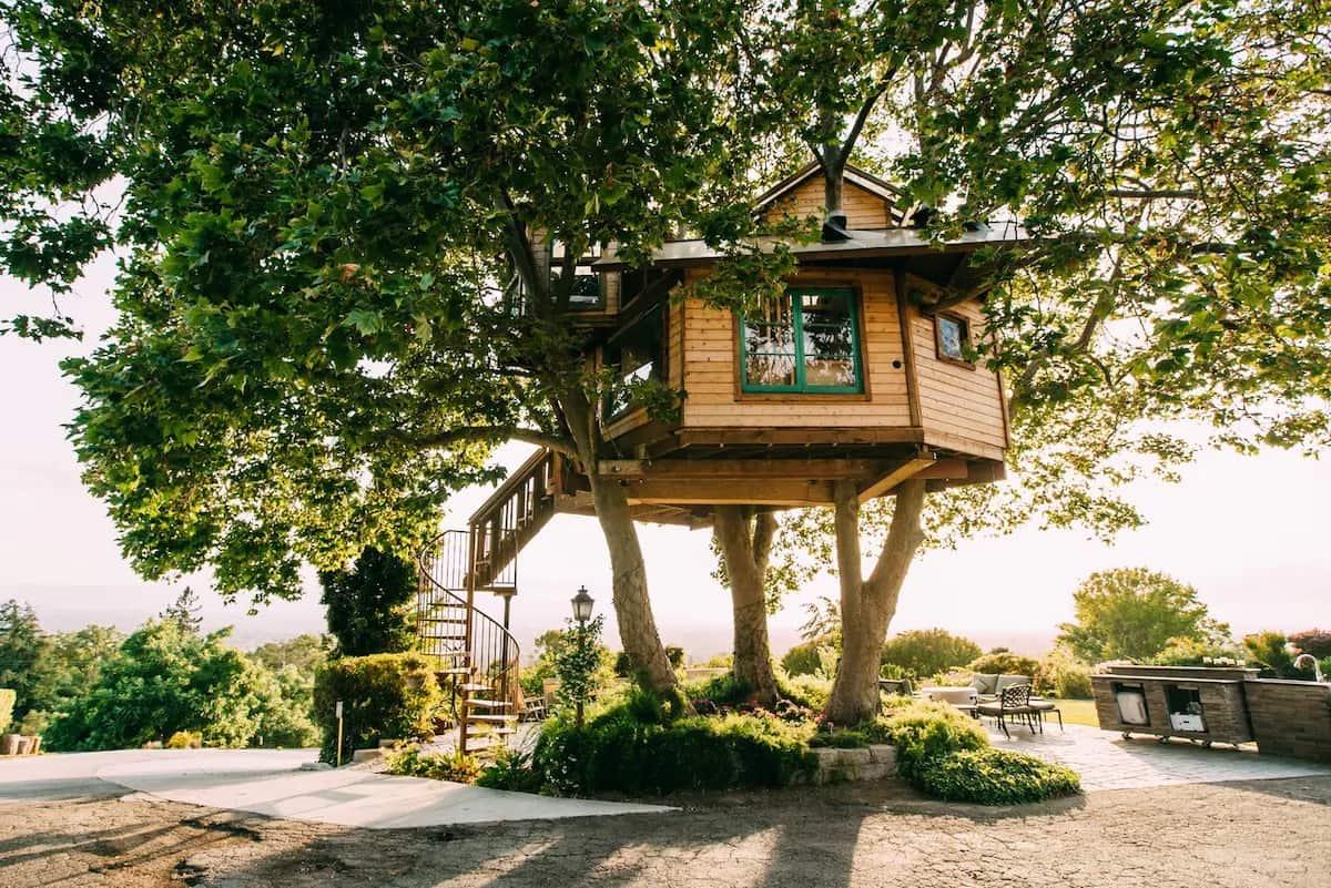 San Jose Treehouse California Rental
