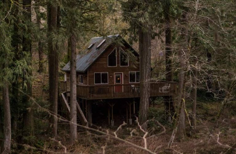 20 Epic Airbnb Big Bear Cabin Escapes (2021)