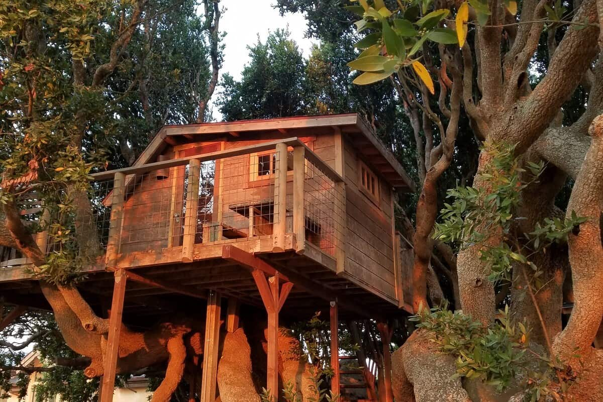 marin treehouse rentals in california