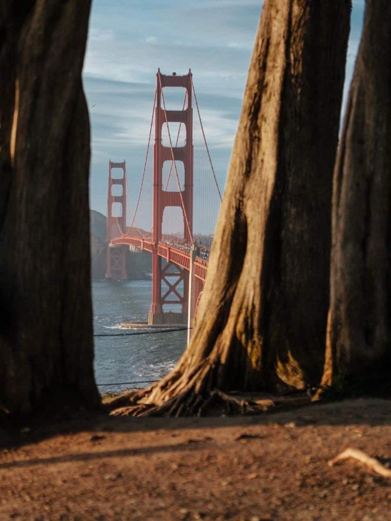 Best and Most Unique Airbnb California Rentals